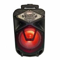 Портативная акустическая система BT SPEAKER-8110